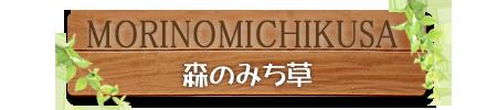「森のみち草」リニューアル(その1)